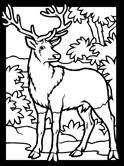 Small Picture Deer Coloring Pages