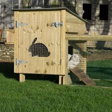 hoppity rabbit house with doorway into run
