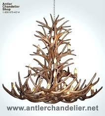 how to make antler chandelier how to make antler chandeliers antler chandeliers antler chandelier elk antler