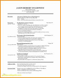What Is A Good Resume Title Lovely Career Resume Examples Beautiful Impressive What A Good Resume Looks Like