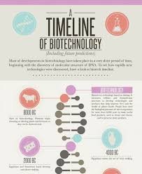 Creative Timelines For Projects Creative Timeline Examples Demaris Business