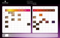 Igora Gloss And Tone Color Chart 83 Best Schwarzkopf Professional Images Schwarzkopf