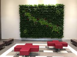 green wall office. Large Living Wall For Office Lobby Green