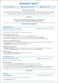 Excellent Resume Template Best Sales Resume Top 10 Best Sales Resume Templates 2019