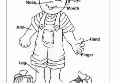 Small Picture Parts Of The Body Coloring Pages For Preschool Coloring Page for