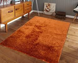 amazoncom exact size  ft x  ft orange rust shaggy area rug hand