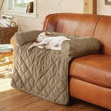protect sofa from dogs fancy sofa covers for pets with sofa covers for pets to protect used sofa for sale