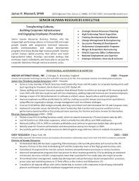 human resource resume co the top 4 executive resume examples written by a professional human resource resume
