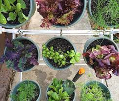 diy vertical herb garden for small spaces