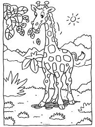 Kleurplaat Giraf Een Bladeren Van Ee Hoge Boom Kleurplatennl