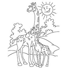 Joyous Giraffes Coloring Pages Baby Giraffe Realistic Of Cartoon