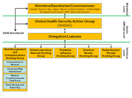 Global Health Security Initiative Ghsi