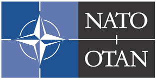Image result for 1994 First NATO Military Action