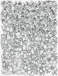 Pentekening Kleurplaat Volwassenen Geertje Aalders Illustraties