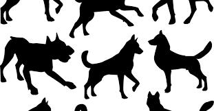12 Year Us Dog Bite Fatality Chart Breed Specific Legislation And Dog Bites
