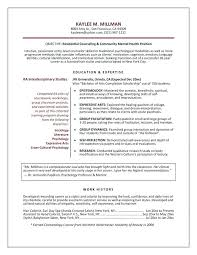 15 Counseling Resume Samples Proposal Agenda