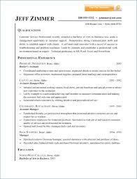 Examples Of Professional Summary For Resume Ceciliaekici Com