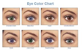 Iris Color Chart File Eye Color Chart By Ygraph Png Wikimedia Commons