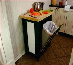 Kitchen Trash Can Ideas Cool Inspiration Design