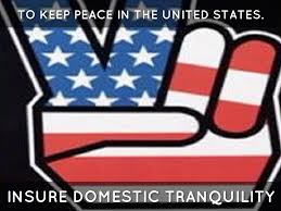 Ensure Domestic Tranquility Preamble By Lexi Blenden