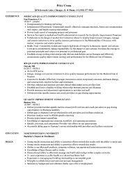 Quality Improvement Consultant Resume Samples Velvet Jobs