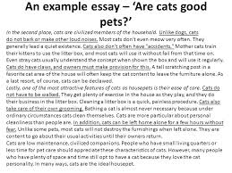 as a level business studies essay writing ppt video online an example essay are cats good pets