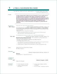 Resume Objective Examples Management Beauteous Resume Objective Statement Examples For Nursing Professional In