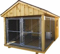 diy dog kennel best of 18 x14 double dog kennel with board batton siding and