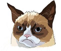 easy grumpy cat drawing. Delighful Easy Grumpy Cat Drawing Tutorial On Easy Grumpy Cat Drawing