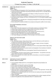 Project Finance Resume Samples Velvet Jobs