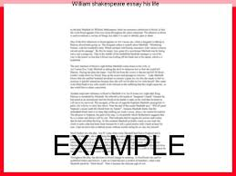 william shakespeare essay his life essay service william shakespeare essay his life coursework on life of william shakespeare from essayukcom