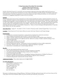Resume Examples For Young Adults Resume Examples For Young Adults Best Of Best Ideas Resume Sample 13