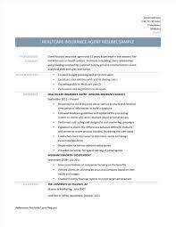 Life Insurance Agent Resume Examples Sidemcicek Com