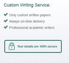 custom essay writing just from only custom written papers