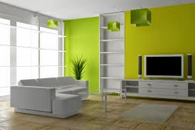Small Picture Wall Paint Colour Combinations wall colors combinations for