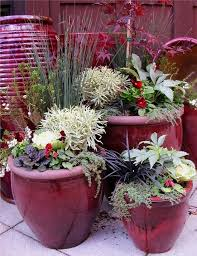 Small Picture Winter Container Garden Ideas Design Your Life