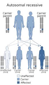 Autoimmune polyendocrine syndrome type ...