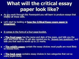 the critical essay ppt video online  what will the critical essay paper look like