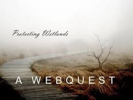 This Webquest Comes With A Worksheet And An Answer Key Each Link In The Webquest Points To Information That Your Students Will Nee Wetland Webquest Ecosystems