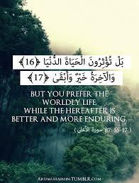 Quran Quotes Classy 48 Quran Quotes