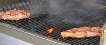 best propane tailgate grill in 2018 2019