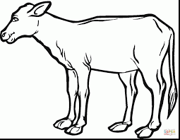 Small Picture Superb cow calf coloring page with cow coloring page spectacular