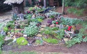 outdoor fairy garden. outdoor fairy garden with rocks and shrubs r