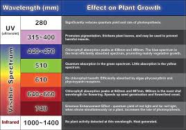 Led Grow Light Wavelength Chart Led Grow Lights Grow