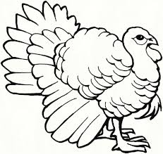 Tweety And Sylvester Coloring Pages Fresh Free Bird Coloring Pages
