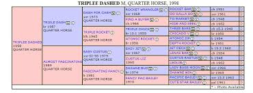 Horse Pedigree Chart Triplee Dashed Quarter Horse Mare Pedigree Chart By Air