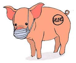 swine flu kills sometimes acirc sect com illustration joe kloc