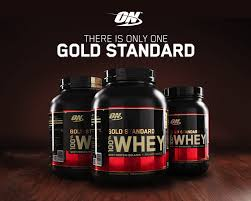 gold standard whey protein powder 5 lb