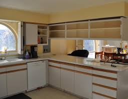 painting particle board kitchen cabinets trends and particle board kitchen cabinets review
