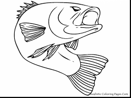 Small Picture stunning tuna fish coloring page with fishing coloring pages